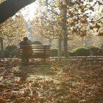 公園ベンチ男性